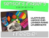 A Sixth Sense: Sensory Imagery Activity