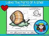 A+ Snail Labels
