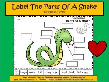 A+ Snake Labels
