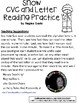 A+ Snow: CVC Words And Letter Reading Practice