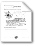 A Spider's Web (Captions)