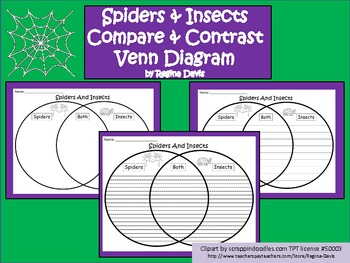 A+ Spiders And Insects Comparison