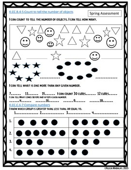A Spring Common Core Assessment