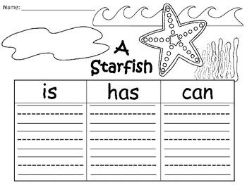 A+  Starfish ... Three Graphic Organizers