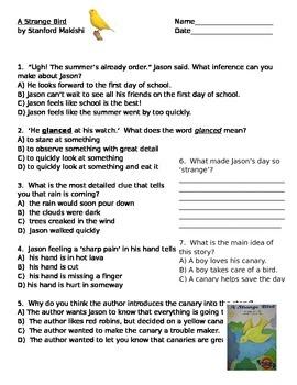 A Strange Bird Comprehension Questions