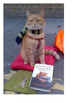 A Street Cat named Bob Word Search
