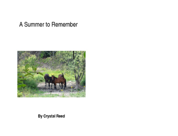 A Summer to Remember--chapter book for reading comprehension