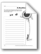 A Sunflower Seed