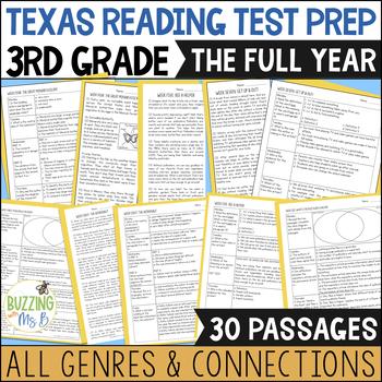 Third Grade A TEK-a-Day Reading Test Prep & Review: The Big Bundle