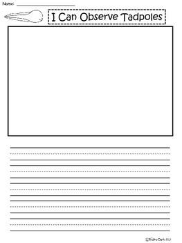 A+ Tadpole: Writing Paper