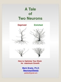 A Tale of Two Neurons