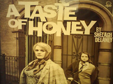 A Taste of Honey 8 Week Unit - 32 Lessons, PPT, Resources, Homework!
