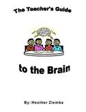 A Teacher's Guide to the Brain