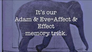 Vocabulary Tip: Affect vs Effect