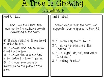 A Tree Is Growing by Arthur Dorros Text-Based Questions
