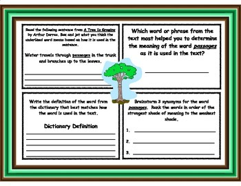 A Tree Is Growing by Arthur Dorros Vocabulary Graphic Organizers