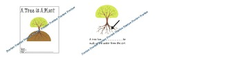 A Tree Is a Plant - Student Booklet