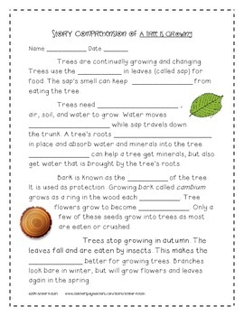 A Tree is Growing Supplemental Activities 3rd Grade Journeys Unit 4, Lesson 18