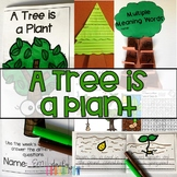 A Tree is a Plant Journeys Activities 1st Grade Unit 5 Lesson 24