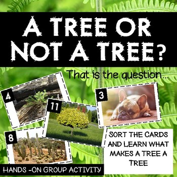 Trees and Forests - What is a Tree?  Sorting Activity
