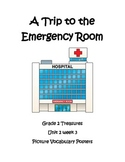 A Trip to the Emergency Room Picture Vocabulary Posters