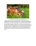 A Trip to the Zoo - Science Chapter Book