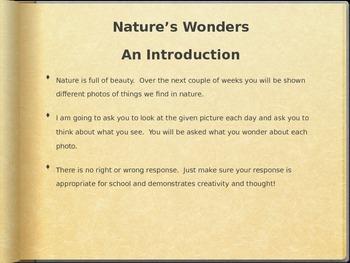A Walk Through Nature