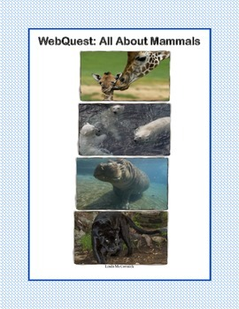 Mammals -Webquest