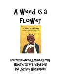A Weed Is a Flower Differentiated Group