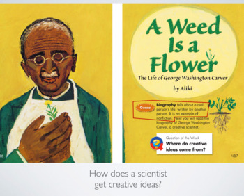 A Weed is A Flower lesson plan keynote