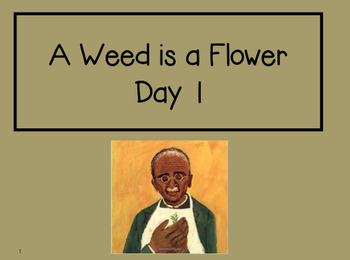 A Weed is a Flower 2nd Grade Reading Street Powerpoints