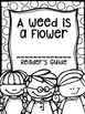 A Weed is a Flower Supplemental Activities (Reading Street Lesson 15)