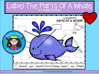 A+ Whale  Labels