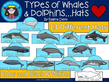 A+ Whales and Dolphins: Different Types... Hats
