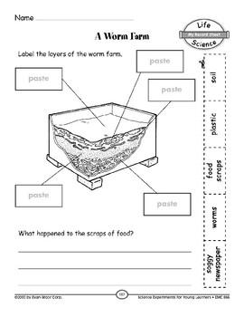 A Worm Farm (Organisms and Their Environments)