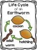 Worm Science Investigation Unit