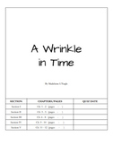 A Wrinkle in Time Teaching Packet - Vocab, Study Guides, a