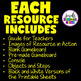 A YEAR OF UNPLUGGED CODING ACTIVITIES BUNDLE (Hour of Code Activities)