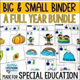 A Year Full of Big & Small for Special Education