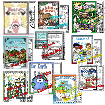 A Year of Lapbooks: BC Grade 4 Science