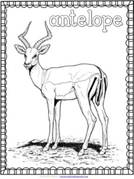 A-Z Animal Coloring Pages