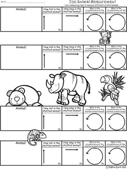 A+ Zoo Animals: Measurement Activity
