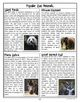 A Zoo Day 7-Hour Complete Sub Plan Thematic Unit for Grades 3-4 Common Core