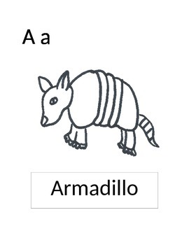 A for Armadillo