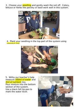 Part one - A guide to setting up hydroponics part one