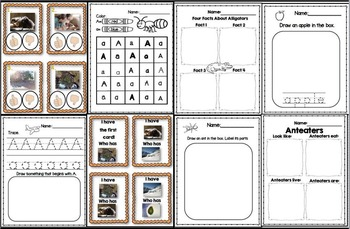 A is for Alien/A Like In Anteater Bundle (2 Complete Letter A Units)