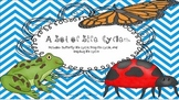 A lot of Life Cycles (Butterfly, Frog, and Ladybug)