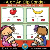 Article Task Cards: A or An?