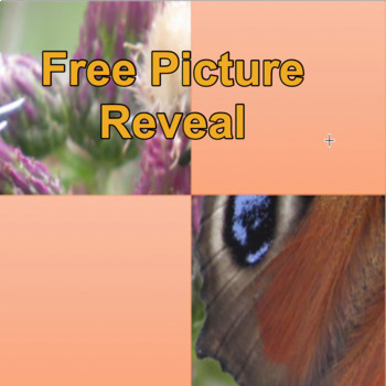 Picture Reveal Game Free Add your Own Questions