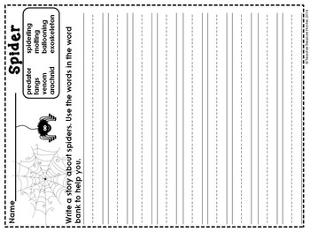A spider vocabulary activity~vocabulary cards + writing page + graphic organizer